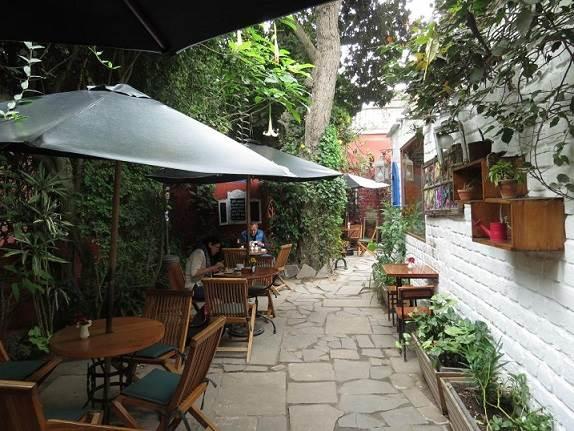 Mejores restaurantes pet friendly en Lima