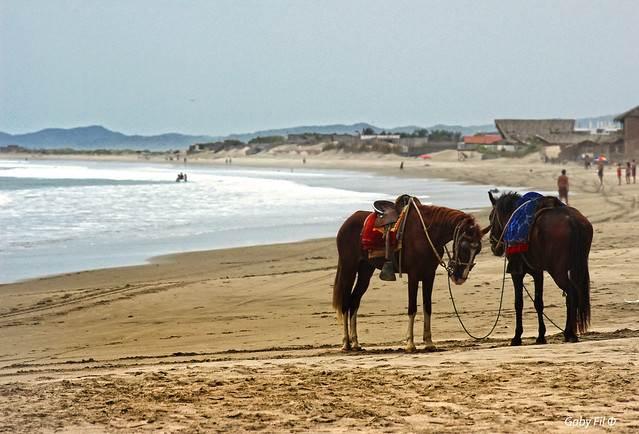 Lima y Máncora : Dos destinos que te hacen sentir en casa