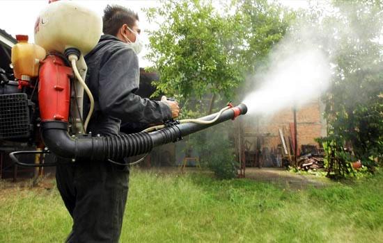 Las mejores empresas de fumigación en Lima – Lima Sabe
